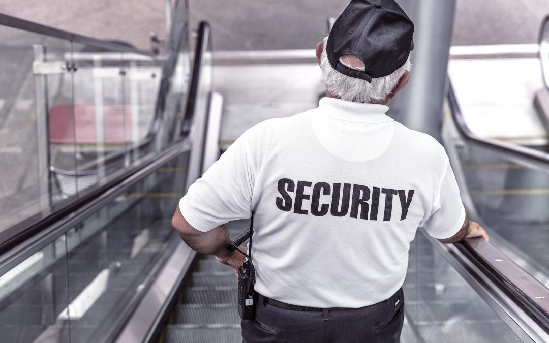 what security guard service do i need for my business