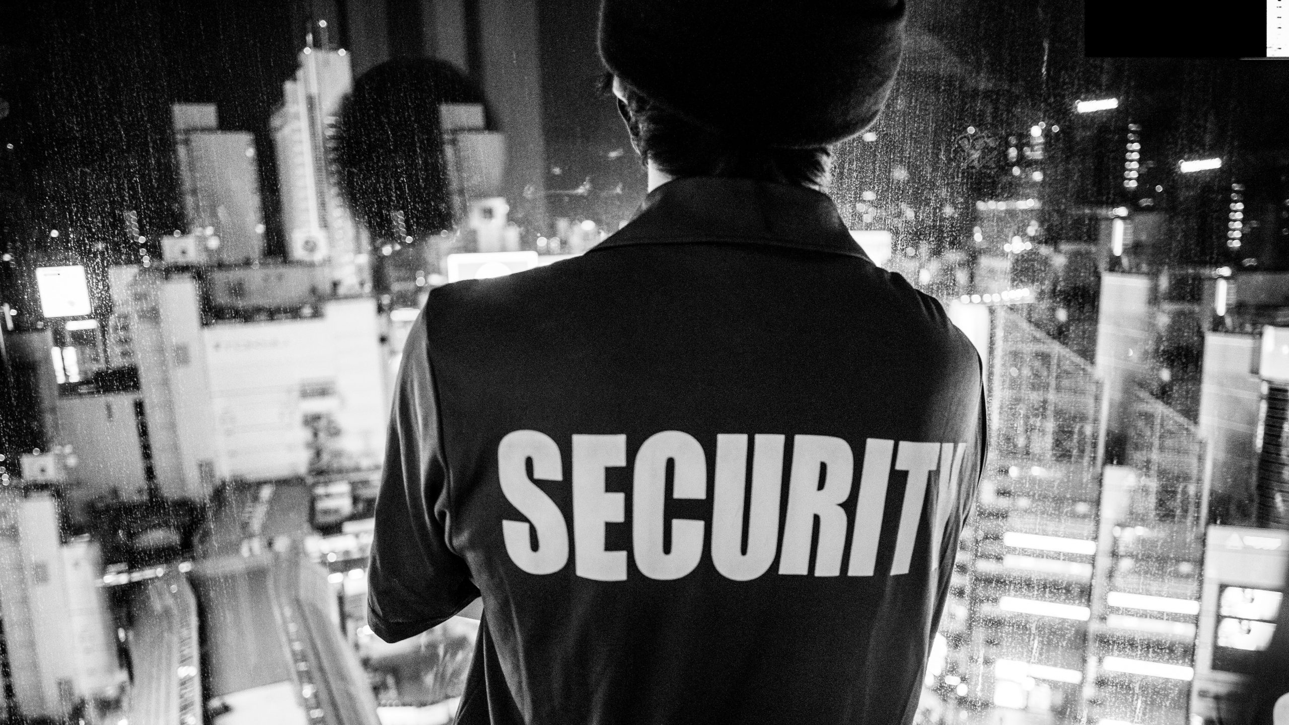 whats the difference between security and police